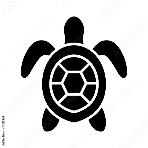 sea turtle marine turtle top view flat icon for nature apps and rh stock adobe com Colorful Sea Turtles Sea Turtle Illustration