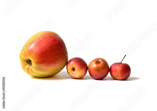 Fotografía four apples - one big apple from shop and three homemade small apples all on whi