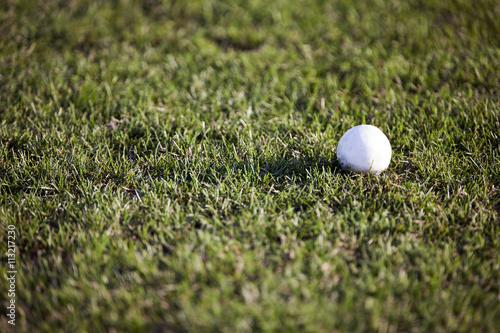 White polo ball on grass