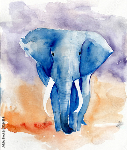blue-elephant-watercolor-illus