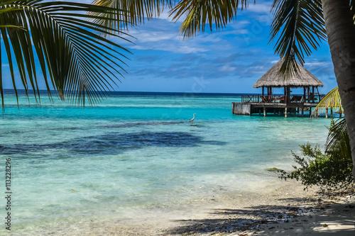 Photo Paradise beach