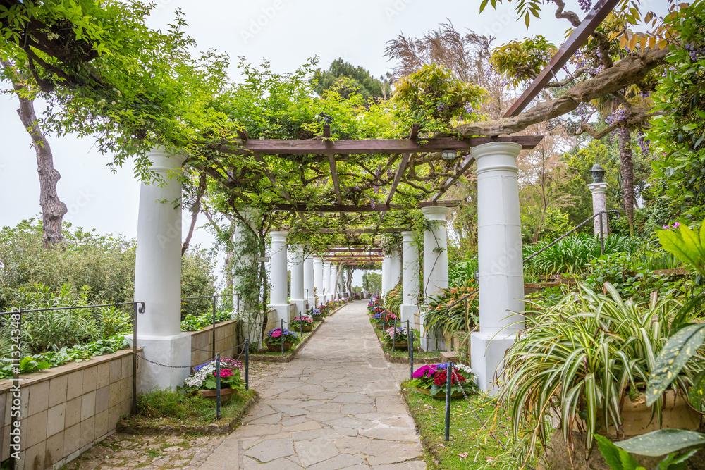 Photo Villa San Michele A Capri