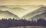 Landscape of misty mountain hills.  - 113251013
