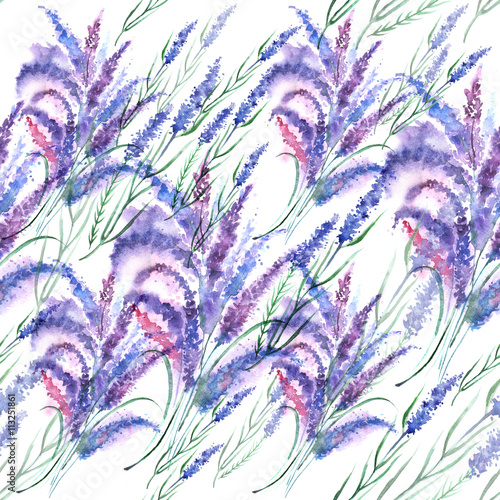 Vintage pattern - lavender. Bouquet of wild lavender flowers, made with watercolors - 113251861