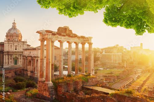 Obrazy na płótnie Canvas Forum - Roman ruins in Rome, Italy
