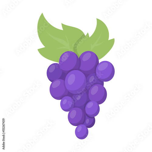Photo Grapes icon cartoon. Singe fruit icon from the food set.