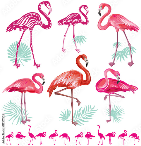 Canvas Prints Set of pink flamingoes