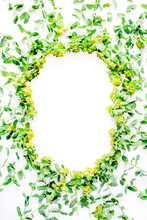 Floral Wreath Frame With Yellow Wildflowers And Green Leaves On White Background. Flat Lay, Top View