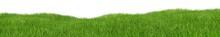Green Hilly Grass Landscape Pa...