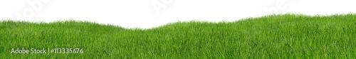 Obraz green hilly grass landscape panorama isolated on white background / Grün hügelige Wiese Gras landschaft isoliert vor weißem Hintergrund - fototapety do salonu