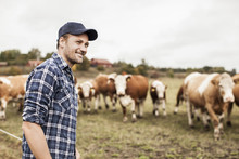 Farmer On Pasture With Cows