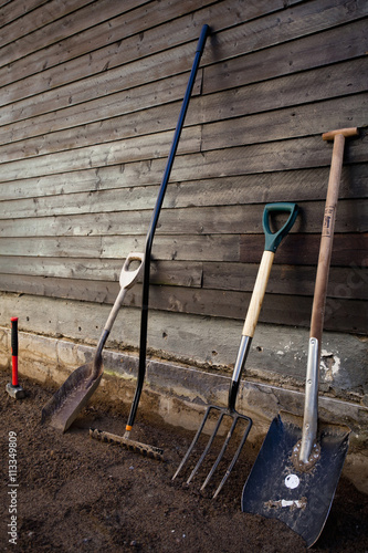Foto op Plexiglas Wand Group of gardening tools against wooden wall