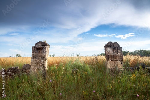 Fotografie, Obraz  Two Old Stone Pillars on a Grass Field. Altamura, Apulia, Italy