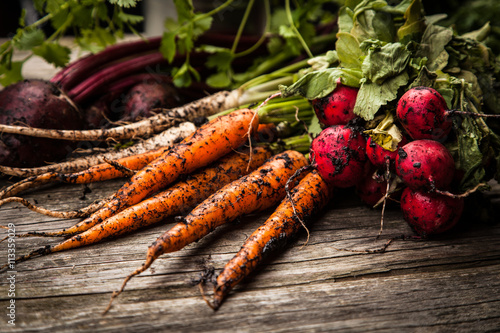 Tuinposter Groenten Fresh organic vegetables