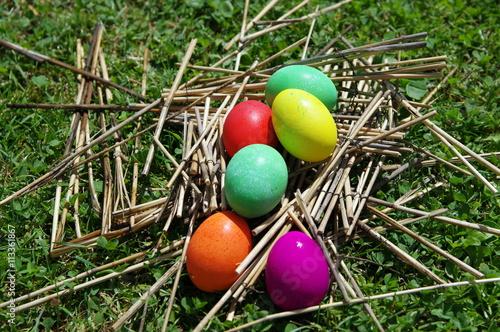 Fotografie, Obraz  œufs de couleurs