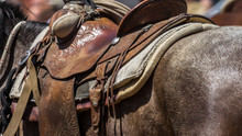 Detail Of Horse's Leather Sadd...