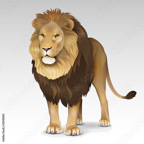 In de dag Kinderkamer Illustration of African lion