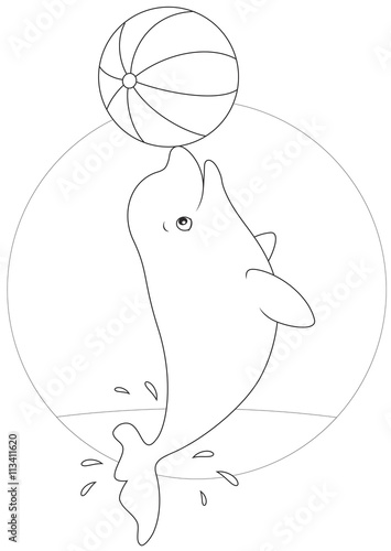 Fotografie, Tablou  beluga whale playing with a ball