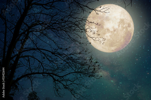 Fotografiet Milky Way star in night skies, full moon and old tree - Retro style artwork with