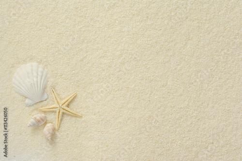 ヒトデと貝殻 白砂背景
