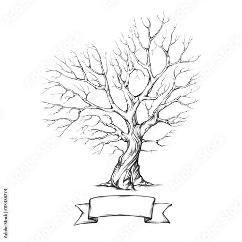 Baum mit herzförmiger Krone – kaufen Sie diese Illustration und ...