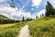 Ski Lift In Alpine Meadows In Albion Basin Of Wasatch National Forest, Utah