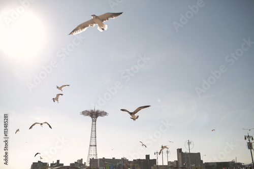 Birds flying against sky in Coney Island on sunny day Poster