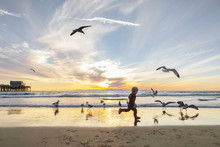 Side View Of Girl Playing With Seagulls At Beach Against Sky During Sunset