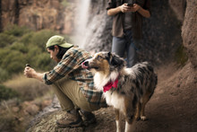 Friends Using Phone Besides Dog Standing At Forest