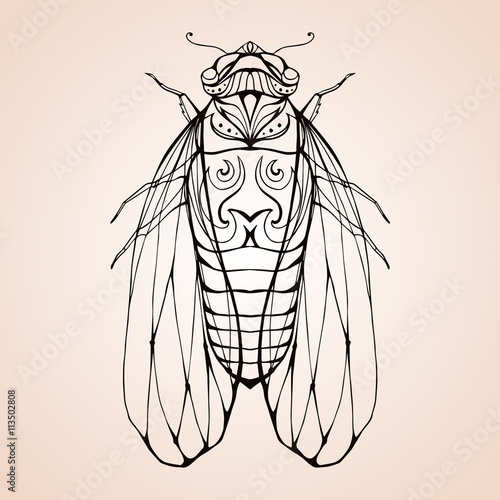 Illustration cicada with boho pattern. Vector element for coloring ...