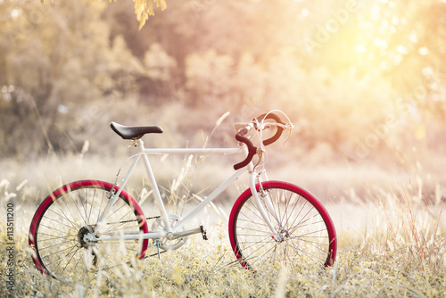 Fotobehang Fiets Sport Vintage Bicycle with Summer grass field ; vintage filter s