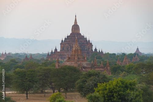 Garden Poster Light pink Pagodas at bagan , Myanmar