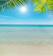 beach under a shining sun