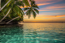 Sunset On Tropical Island With...