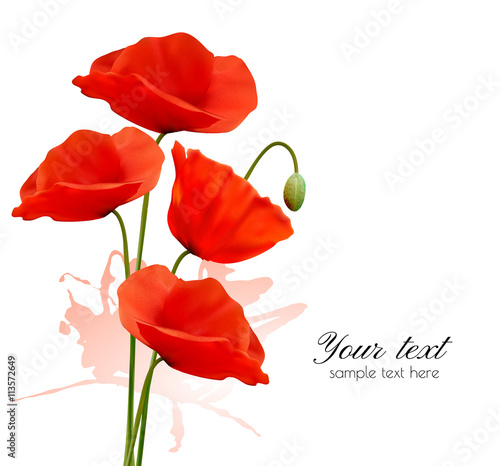 Obraz Nature summer background with red poppies. Vector. - fototapety do salonu