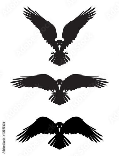 Fototapeta Dark Evil heraldic raven. Mascot, logotype, label.