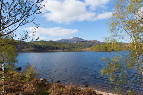 Fotografie, Obraz  Loch Garry Scotland UK beautiful lake west of Invergarry on the A87 south of For