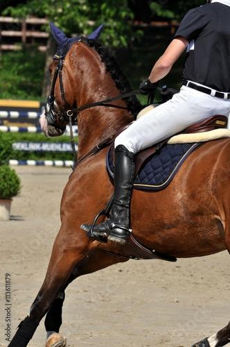 Poster Equitation Zwischen den Hürdden reiten auf dem Turnierplatz