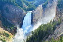 Lower Falls In The Grand Canyon Of The Yellowstone, Wyoming