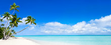 Beach Panorama With Blue Water And Palm Trees