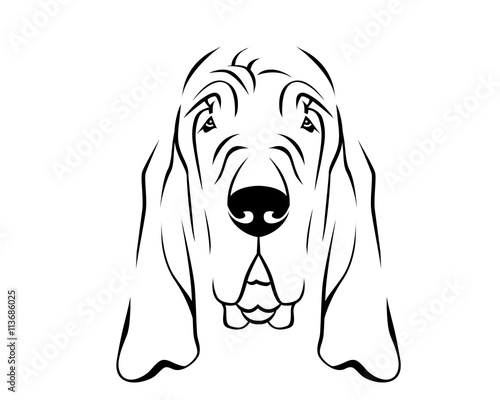 Tablou Canvas Dog Breed Line Art Logo - Bloodhound