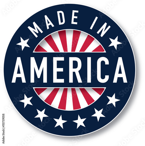 Made in AMERICA vector Poster