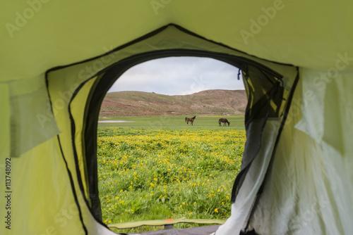 doğal alanlarda kamp yapmak Poster