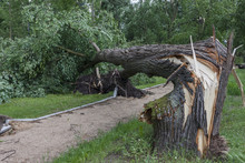 Damages After The Storm And A Hurricane