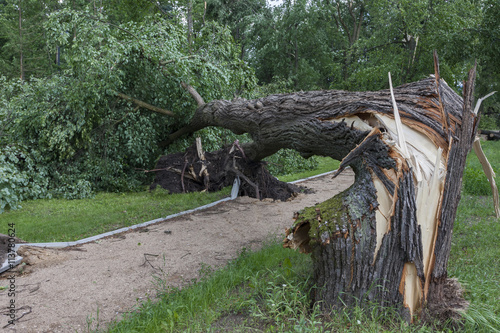 In de dag Onweer Damages after the storm and a hurricane