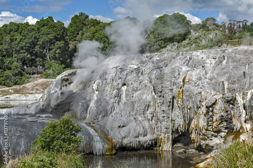 Fotobehang Oceanië Whakarewarewa Geyser at Te Puia thermal park in geothermal valley of Rotorua, New Zealand