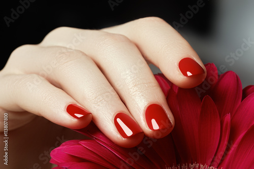 Beauty delicate hands with manicure holding pink flower Poster