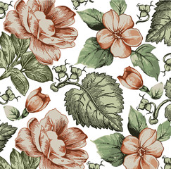 Fototapeta Malarstwo Flowers. Apple blossoms. Classic pattern. Beautiful pink realistic flowers. Vintage background with blooming flowers. Drawing, engraving. Freehand. Wallpaper. Vector victorian style Illustration.