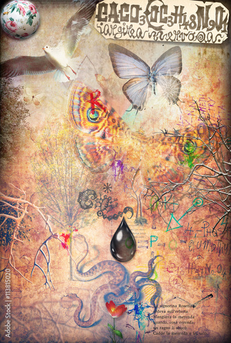 Canvas Prints Imagination The garden of eden