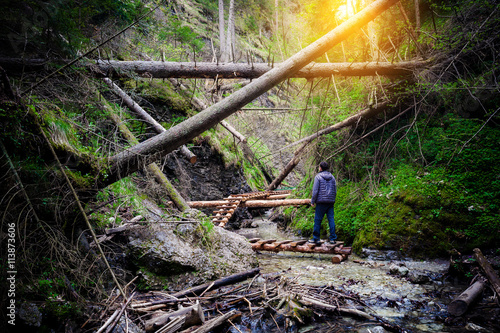 Man standing on the path through fallen trees